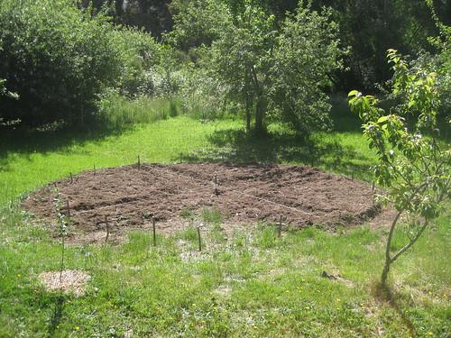 site of a future physic garden by katska