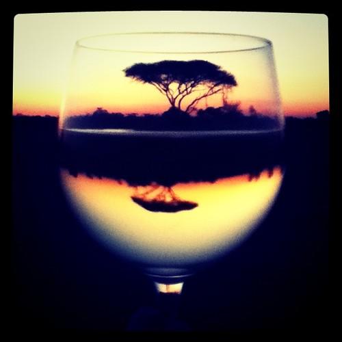 sunset & wine