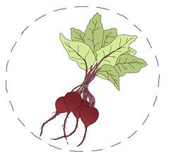beets logo