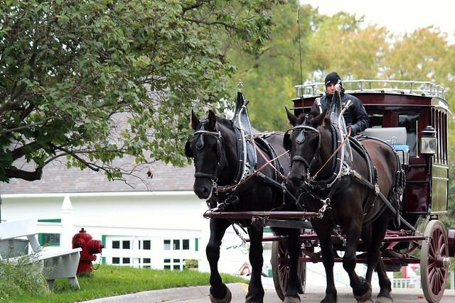 Grand Hotel Horses