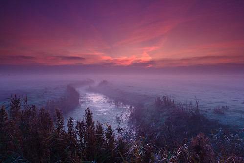 Dawn - Halvergate