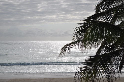Tulum breakfast by the beach (8)
