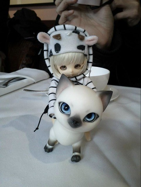 Little Moo riding a.. Kitty!! LOL
