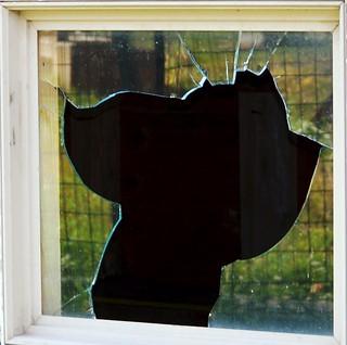 Broken Window Reflection