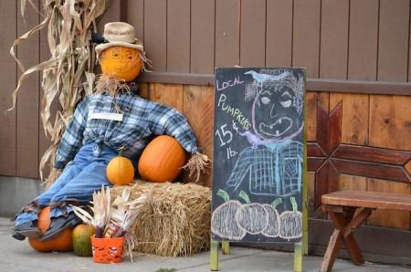 Harvest Festival Baker County Tourism