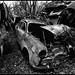 Car Cemetery IV
