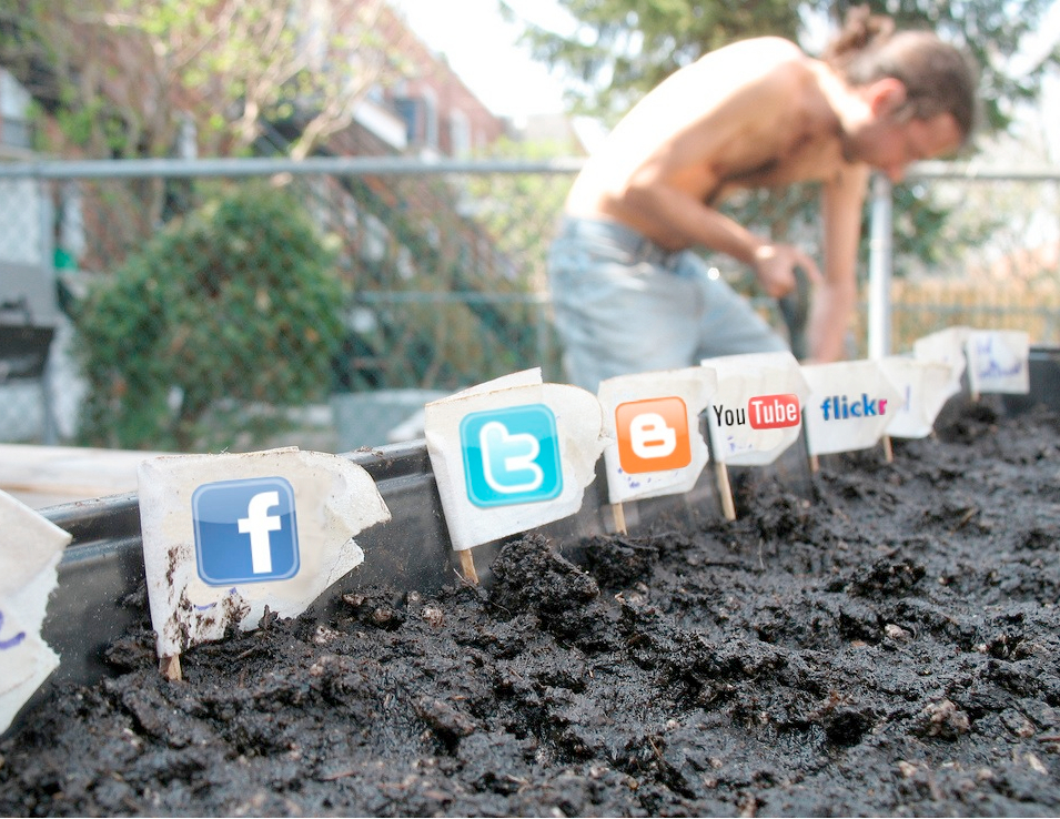 Social media gardening - takes time but pays off! (Credits - j&tplaman / FlickR)