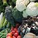 Patterns - Vegetables