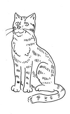 cat4bookBLbw