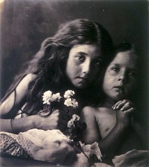 The Red and White Roses, 1865, by Julia Margaret Cameron