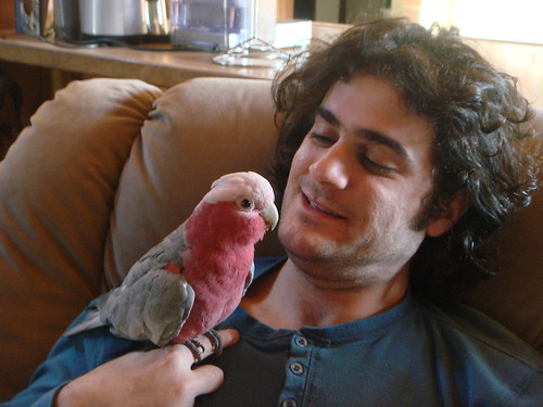 larry and his one true love my husband