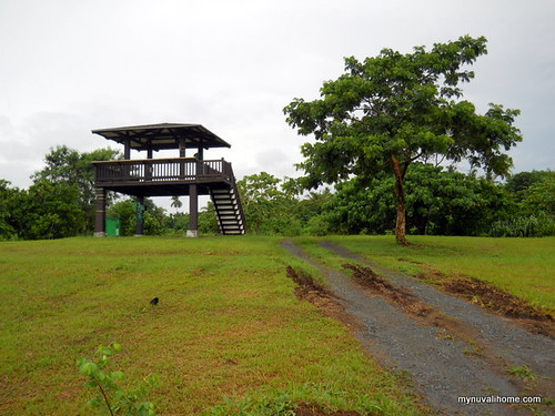 Bird and Wildlife Sanctuary, Nuvali (1)