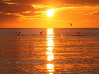 The Perfect Sunrise i5550