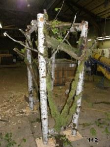 hybrid mossy branches & birch pergola