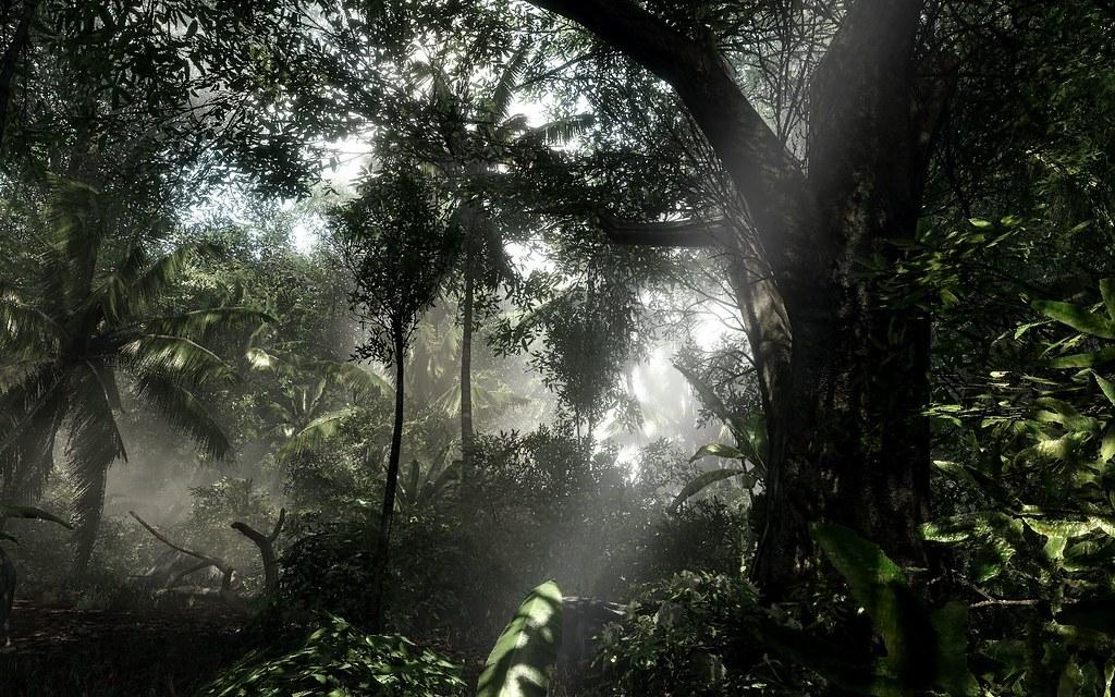 Crysis - Amazonia River map