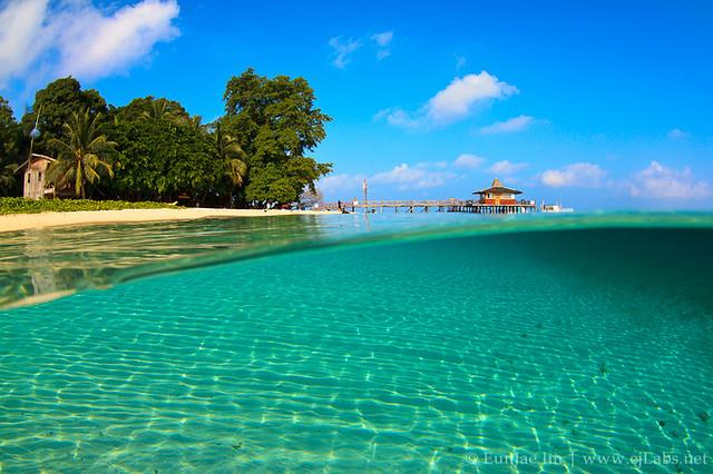 Bird Of Paradise Hd Wallpaper Sipadan Island Flickr Photo Sharing