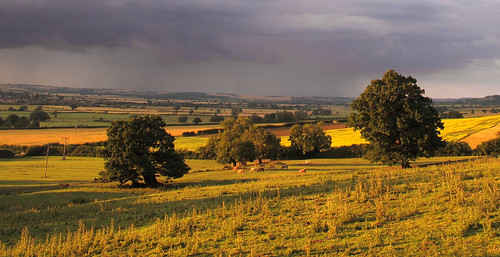 The Welland Valley from Rockingham Hill