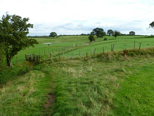 Looking back to Newtown, wall and ditch both ploughed out