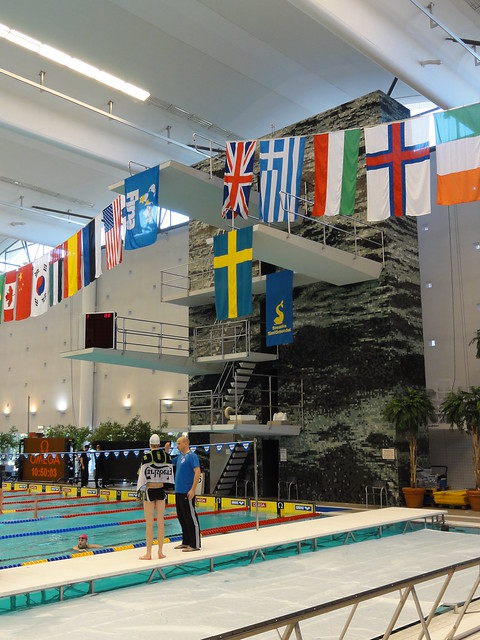 Flags at the FINA 2011 World Cup leg in Stockholm, Sweden