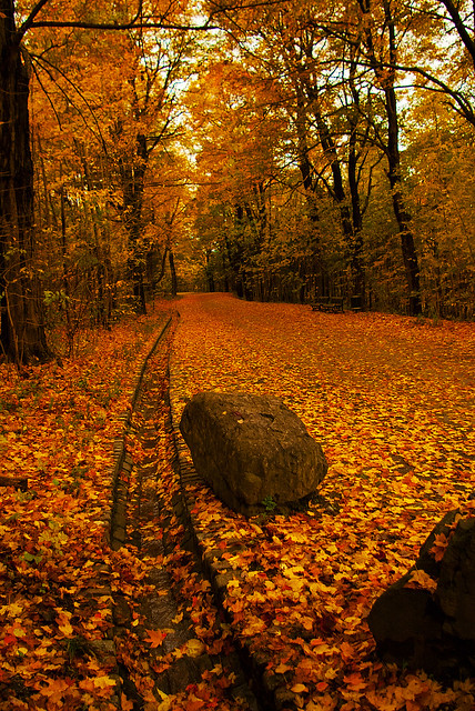 Dove andare in autunno e in inverno