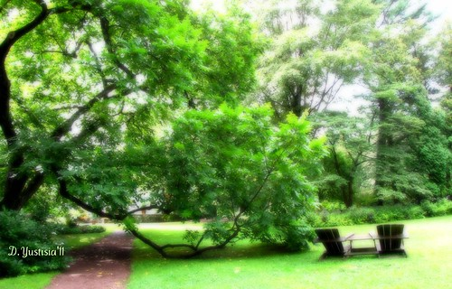 Bartlett Arboretum Playground