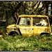 Little Yellow Van