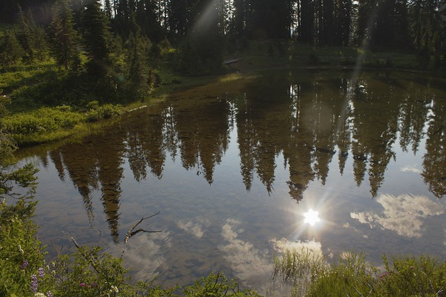 Reflections on Mountain Pond