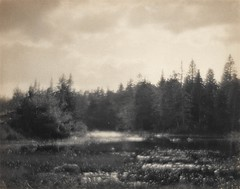 Untitled, Marshland Landscape, c.1900, by Rudolf Eickemeyer, Jr