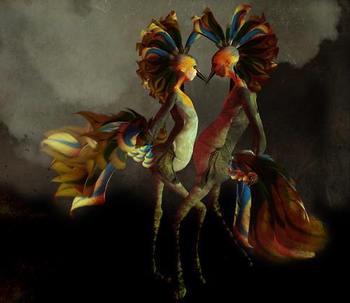 Meta Birds by Meilo Minotaur