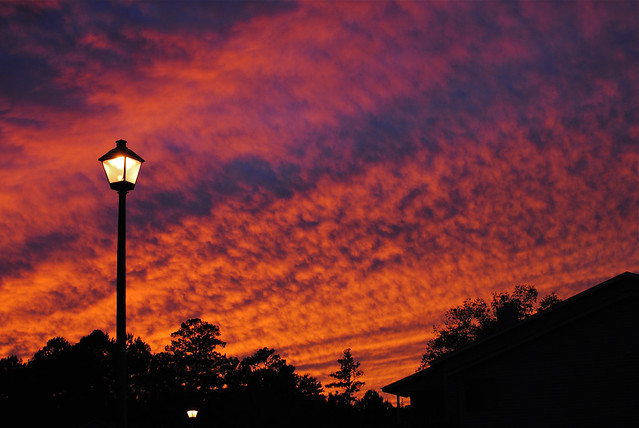 [271/365] Sunset