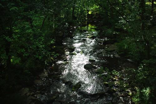 20110821-48_Afon Tarell near Libanus by gary.hadden