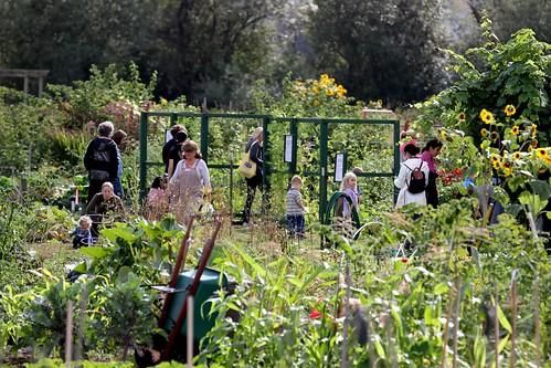 Marymoor Park community garden by kingcountyparks