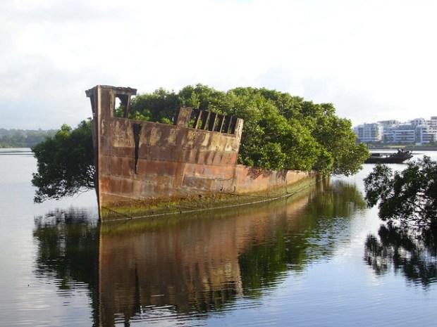 Ayrfield & Mortlake Bank wrecks in Homebush Bay