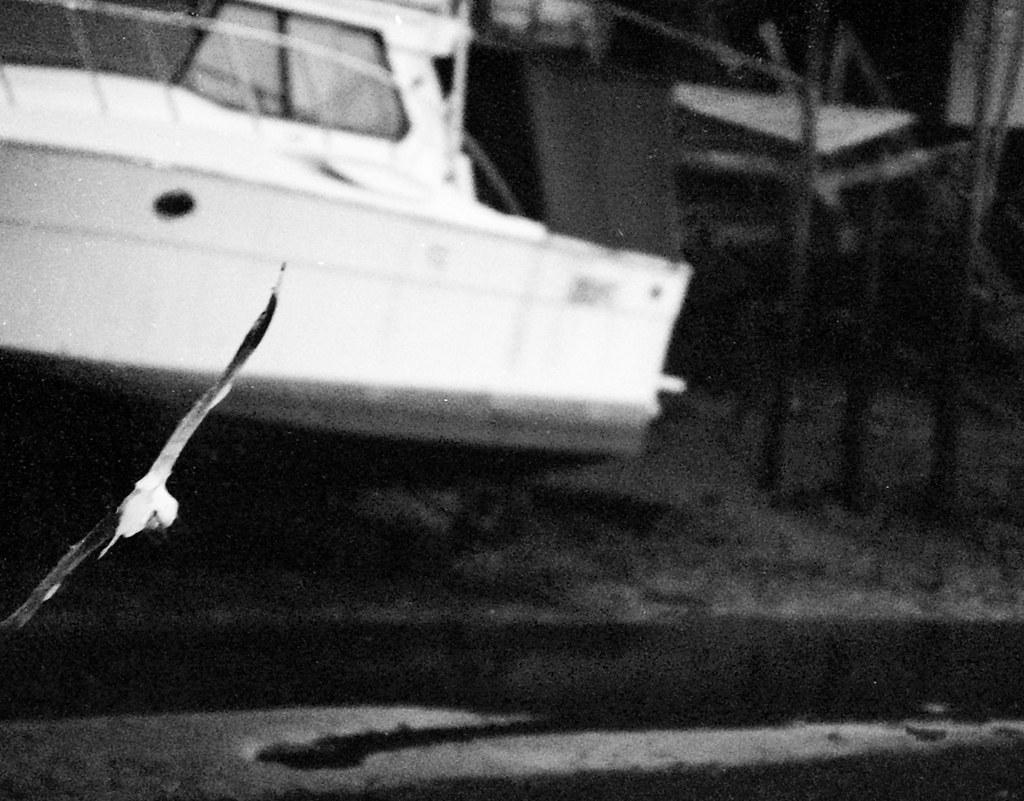gullboat
