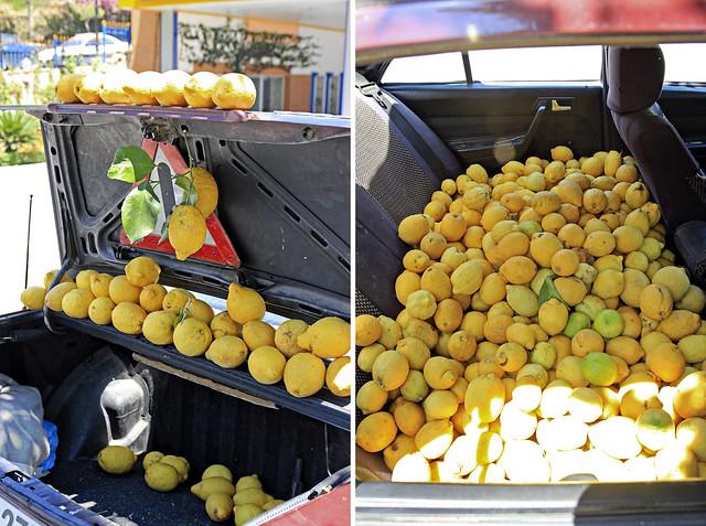 the lemon car