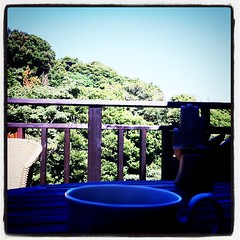 蝉の鳴き声に、涼しい風で、モーニングコーヒー!