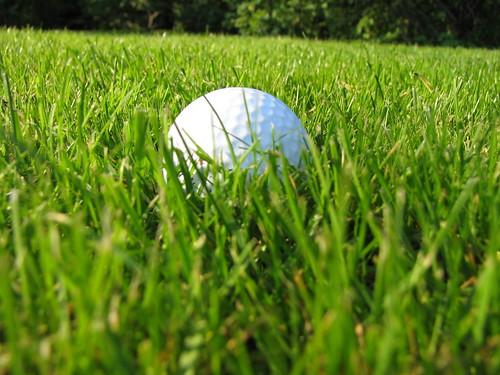 Gorilla Golf Blog
