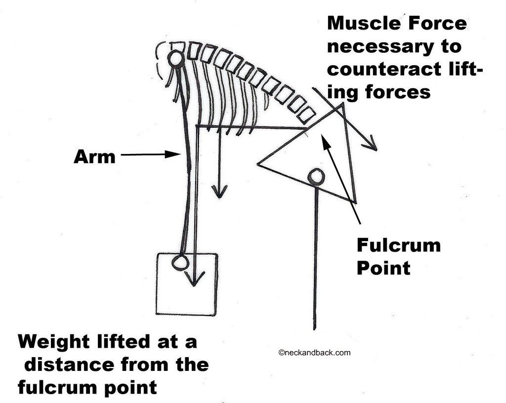 Diagram Of Lifting