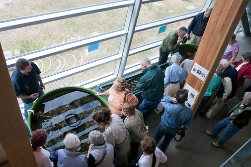 Roads Scholars visit the touch tanks 3