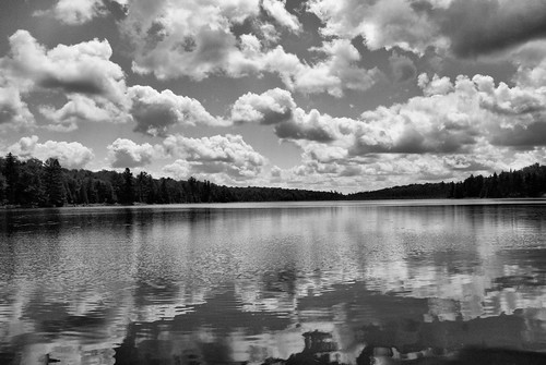 Tooley Pond B&W