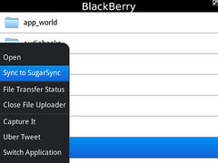 SugarSync for BlackBerry