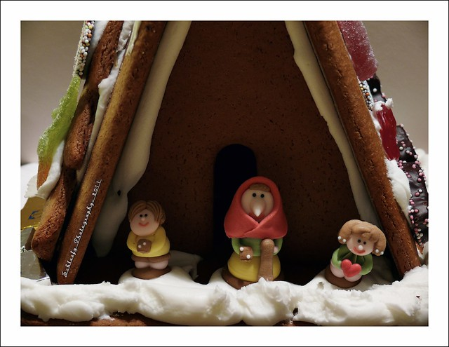 #326/365 Gingerbread House