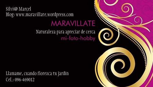 Tarjeta presentación by Maravillate
