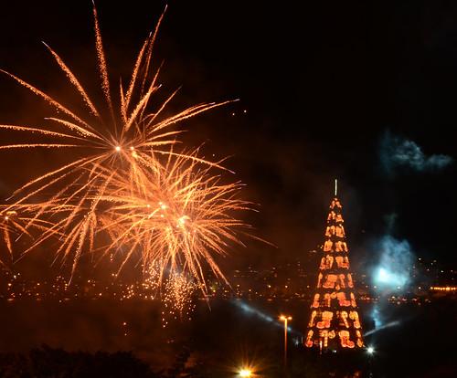 Inauguração da Árvore de Natal da Lagoa - 無料写真検索fotoq