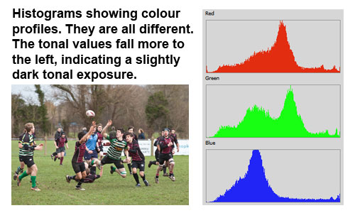A tonal distribution which is a little on the dark side of the histogram.