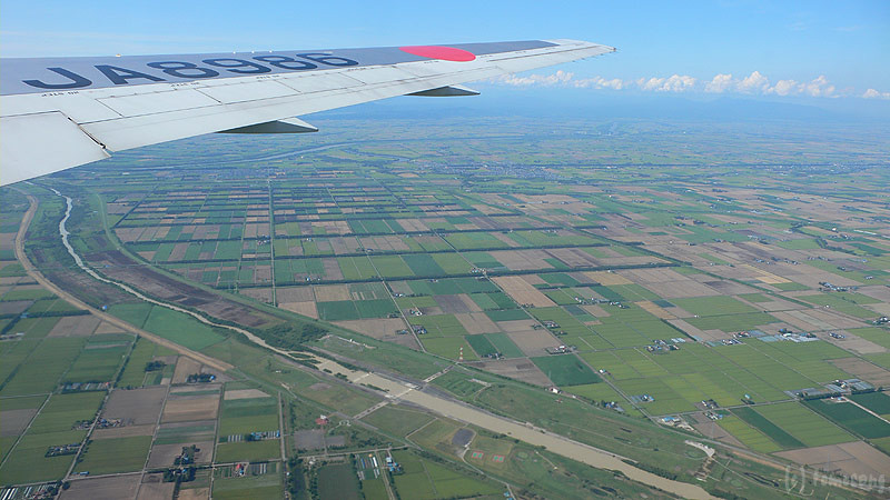 from JAL window