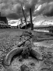 teignmouth dock mono