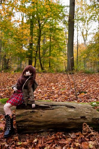 Yoko's autumn walk