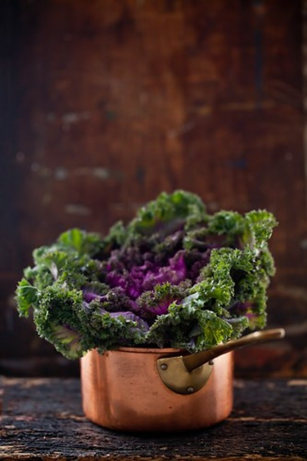 Savoy Lettuce