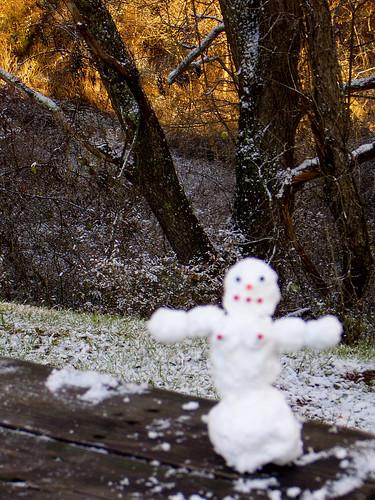 Tiny snowoman